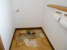 便器を撤去してフロアマットを剥がしたところ、床が傷んでいたので、こちらも修繕することにしました。