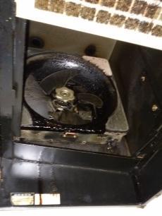 プロペラから油が落ち、キッチンまわりが汚れてしまうため、お手入れがしにくいとお悩みでした。