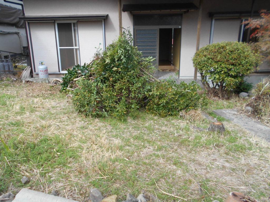 塀を壊す前に植栽を撤去します。 植栽があることで日当たりや部屋からの見通しが悪く、手入れも大変でした。